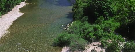 Spécial Aveyron
