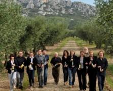 Huiles d'Olive AOP/AOC – Vallée des Baux-de-Provence