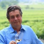 Les Vins – un peu, beaucoup, passionnément…