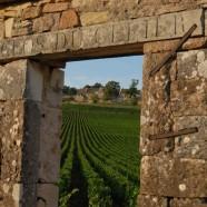 Bouzeron Aligoté 2009 Vieilles Vignes. Domaine du Cellier aux Moines