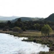 Ecolodge du Lac du Pécher