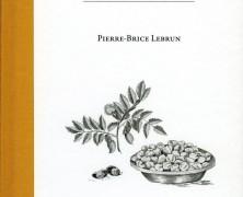 Petit Traité du Pois Chiche – Pierre-Brice Lebrun