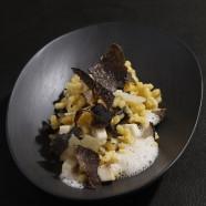 Coquillettes en risotto, truffe noire et champignons