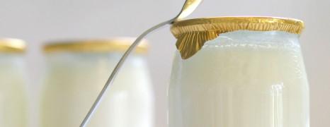 Les Tests Produits de Gourmets&Co – Les Nouveaux Yaourts Natures