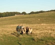 Le Buron de Camejane – La vraie tradition fromagère des plateaux de l'Aubrac