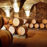 Les Vins, un peu, beaucoup, passionnément …
