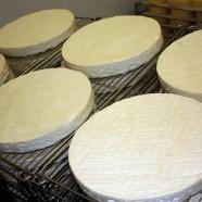 Vous prendrez bien du fromage…