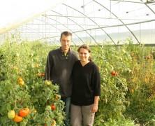 Les légumes bios des Champs Verts
