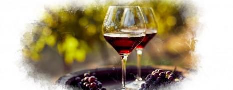 Les Bourgognes de Vigne en Verre