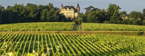 Château de Rayne Vigneau – Sauternes 1er Grand Cru Classé