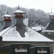 Glenfiddich Age of Discovery 19 ans