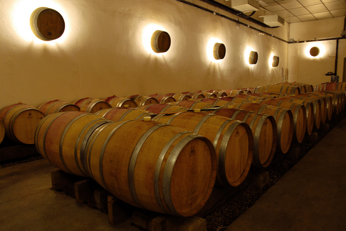 grandboise-vigne-leschais-300
