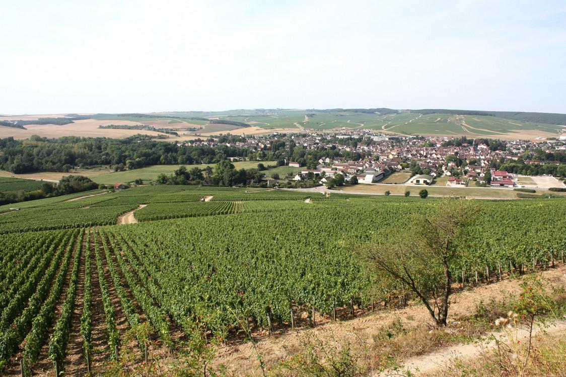 Chablis vu des vignes du domaine © P.Faus