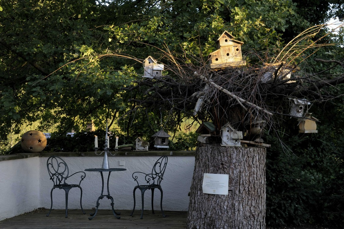 hostellerie la cheneaudi re gourmets co. Black Bedroom Furniture Sets. Home Design Ideas
