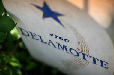Borne Delamotte