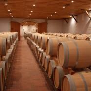 Des vins de bonne compagnie