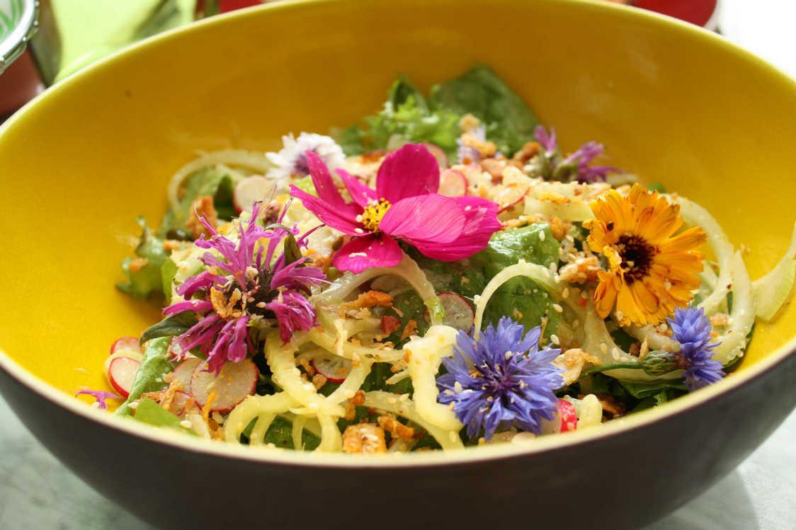 Salade de notre jardin © P.Faus - copie