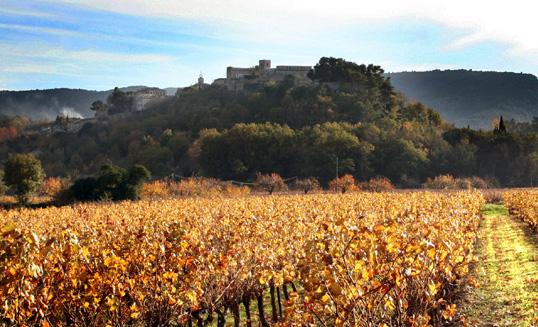 Provence-Luberon-vignes-Marrenon(1)