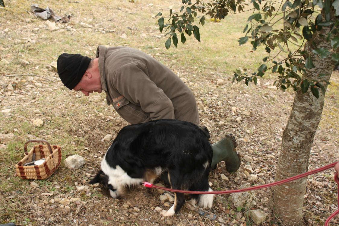 et son chien..; ©P.Faus