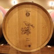 Les Vins – un peu, beaucoup, passionnément …