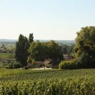 Le Grand Cercle des Vins de Bordeaux