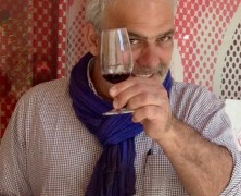 Dictionnaire chic du vin – Léon Mazella
