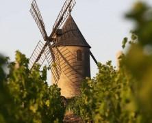 Moulin-à-Vent au Repaire de Bacchus