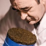 Initiation au Caviar – Les Ateliers Kaviari