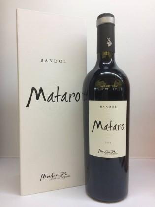 Matoro, le nouveau