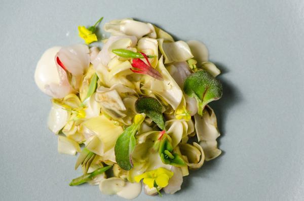 Ari Taymor dish