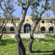 Un Cru Classé en Provence – Château Saint-Maur