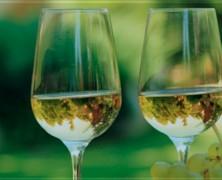 Vouvray – Quelques belles bouteilles