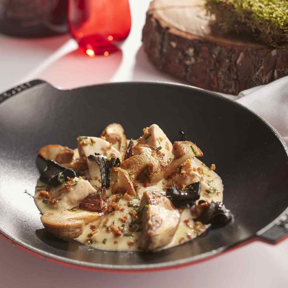 Blanquette de ris de veau au cidre basque, champignon et grattons à l'estragon - copie