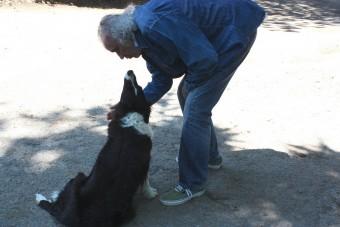 Amour de chien.. en Aveyron