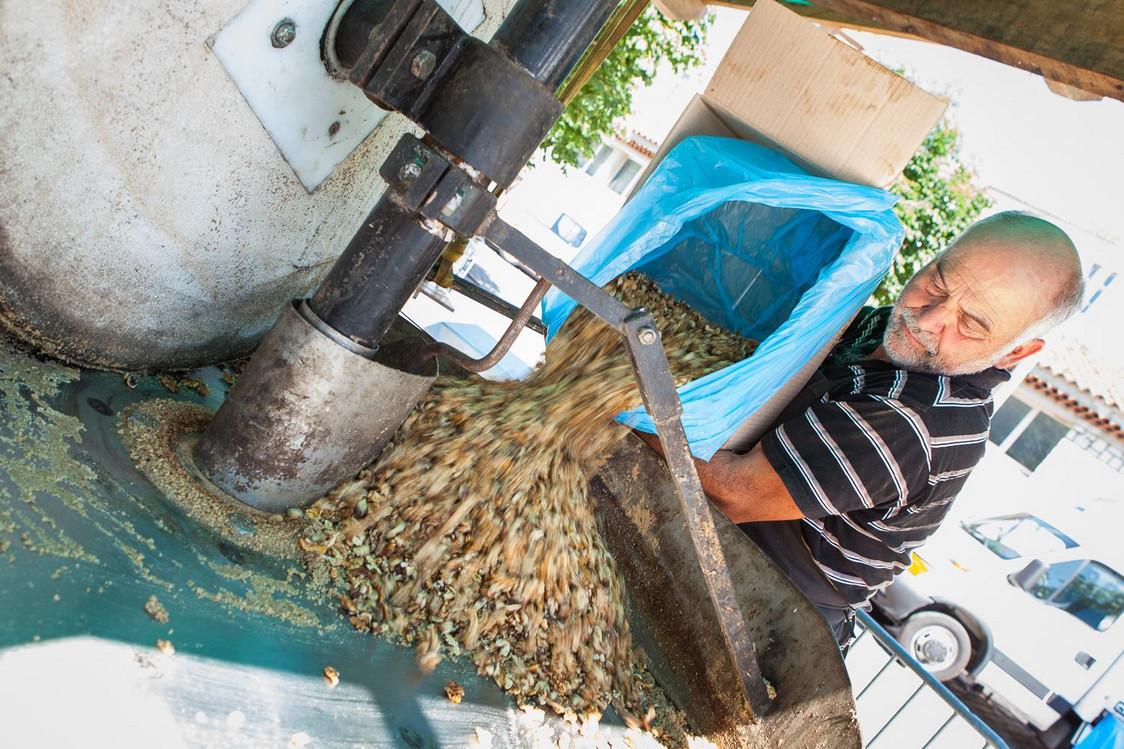 Moulin à huile... de noix
