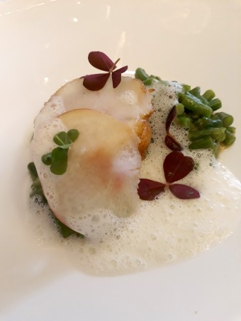 Lotte meunière, pêche plate, haricots verts © Gourmets&co