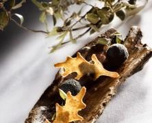 Gastronomie : Dégustez la truffe à prix coutant !