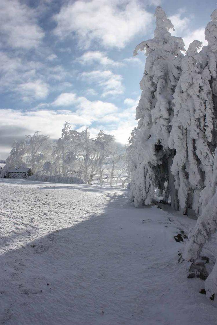 francillon-hebergement-haute-loire-paysage15