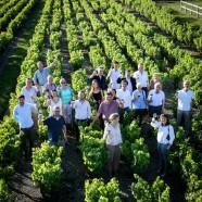 Vignobles & Signatures – Nouveaux Millésimes
