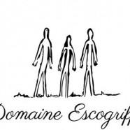 Coup de Cœur – Rosés d'Anjou Saumur – De la tendresse, b… !