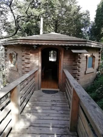 Ma cabane dans la forêt © Gourmets&co