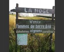 Ferme de La Noge – Quétigny (Côte d'Or)