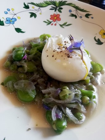 Oeuf mollet, fèves, petits pois © Gourmets&co