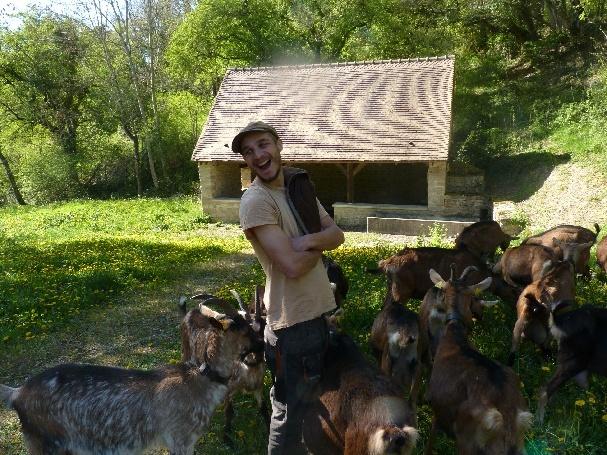 Thomas Maurice et ses chèvres