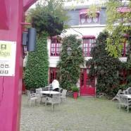 France & Fuchsias – 50550 St Vaast la Hougue