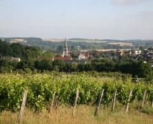Les vins du Vendômois