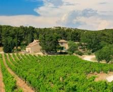 Beaux Blancs des Baux – AOP Baux-de-Provence