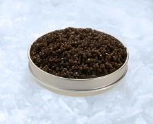 Envie de caviar ? Le caviar français a besoin de vous !