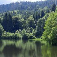 Le Val d'Ajol (Vosges)